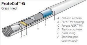 Protecol-G scheme